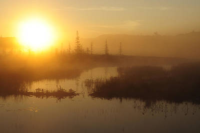 Photograph - Wilderness Sunrise by Bob Grabowski