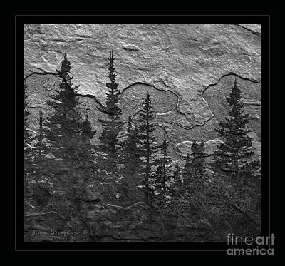 Photograph - Wilderness View by John Stephens