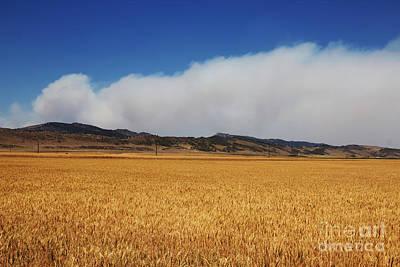 Wildfire Original by Jon Burch Photography