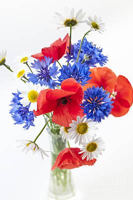 Studio Shot Photograph - Wildflower Bouquet by Elena Elisseeva