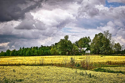 Photograph - Wildflower Field Farmhouse by Greg Jackson