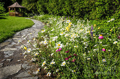 Photograph - Wildflower Garden And Path To Gazebo by Elena Elisseeva