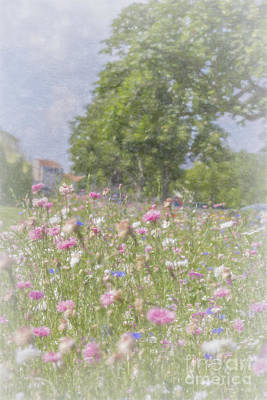 Wildflower Impressionism Art Print