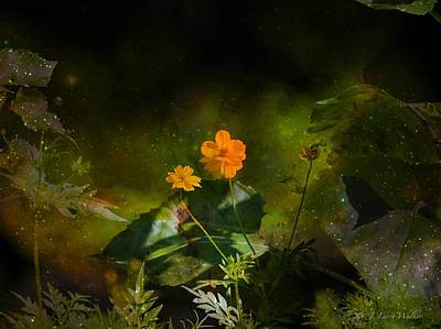 Digital Art - Wildflower In The Twilight Zone by J Larry Walker