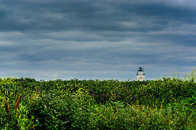 Photograph - Wildflower Lighthouse by Randy Scherkenbach