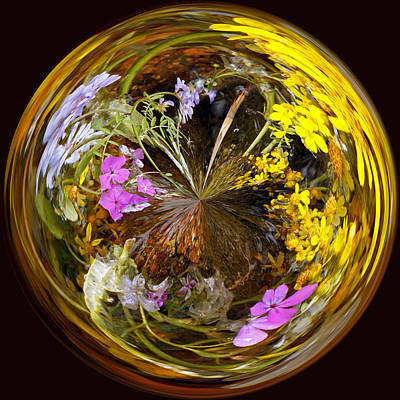 Millefiori Photograph - Wildflower Paperweight by Gary Holmes