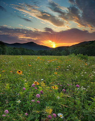 Maine Mountains Photograph - Wildflower Sunset by Darylann Leonard Photography