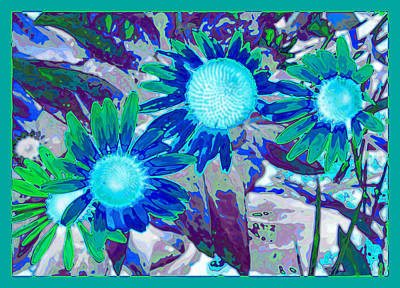 Wildflower Art Print by Tom Druin