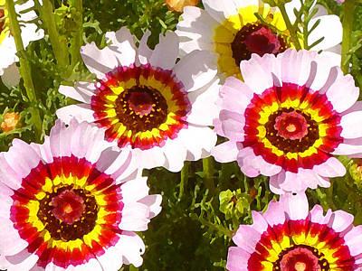 Painting - Wildflowerd Wide 1 by Amy Vangsgard