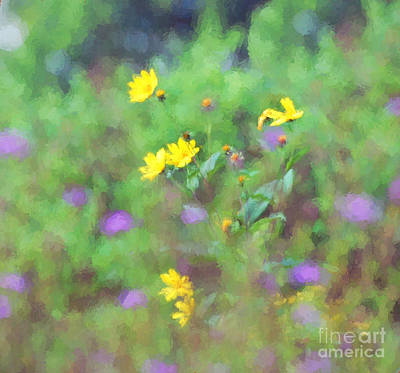 Photograph - Wildflowers 1  by Kerri Farley