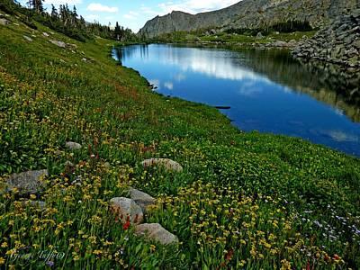 Photograph - Wildflowers Abundant by George Tuffy