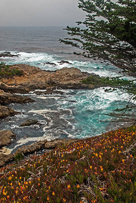 Photograph - Wildflowers And Emerald Water Along The Pacific Coast Highway by Willie Harper