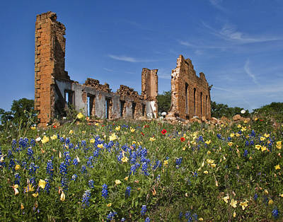 Photograph - Wildflowers And Ruins by David and Carol Kelly