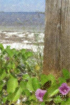 Photograph - Wildflowers At The Beach by Barbie Corbett-Newmin