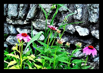 Black Eyed Peas Photograph - Wildflowers By Stone Wall by Marsha Heiken