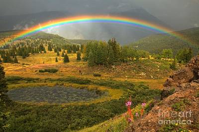 Photograph - Wildflowers Lakes And Rainbows by Adam Jewell