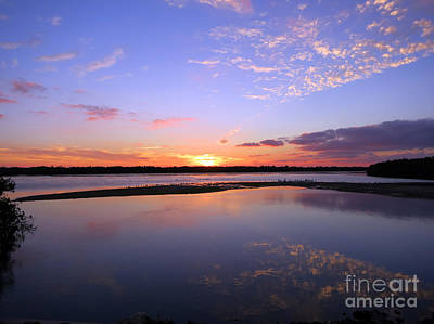 Photograph - Wildlife Drive Sunset by Patricia Januszkiewicz