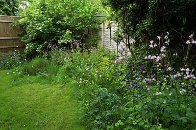 Garden Flowers Photograph - Wildlife-friendly Garden by Bob Gibbons