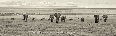 Photograph - Wildlife Pano On The Masai Mara by June Jacobsen