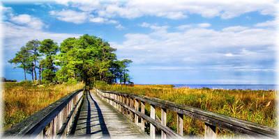 Photograph - Wildlife Refuge Along The Chesapeake by Carolyn Derstine