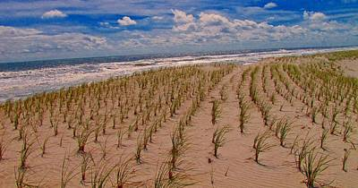 Sandpiper Photograph - Wildwood Beach Breezes  by David Dehner