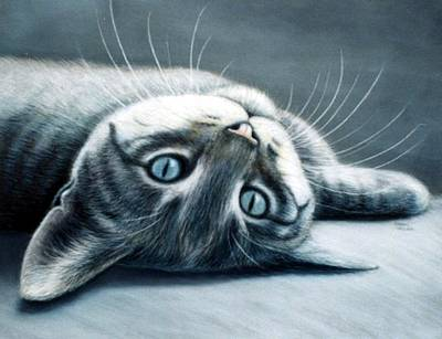 Animal Portraits Painting - Will You Play? by Sharon Challand