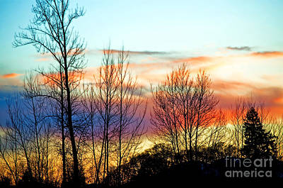 Corvallis Photograph - Willamette Valley Sunset Splendor by Gwyn Newcombe
