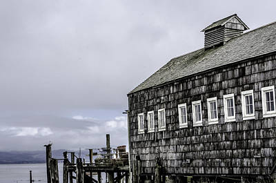 Photograph - Willapa Bay  by Craig Perry-Ollila