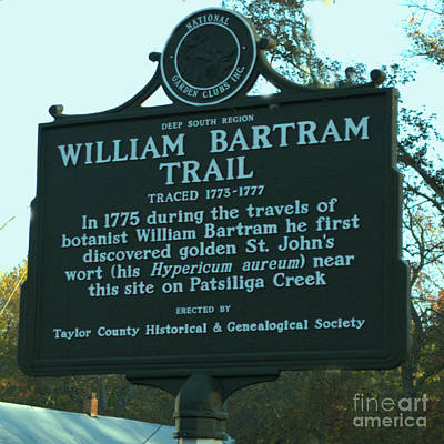 Photograph - William Bartram by Donna Brown