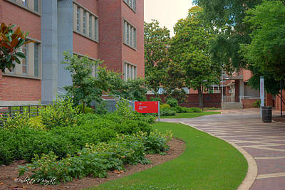 Photograph - Williams Hall - Nc State Main Campus by Paulette B Wright