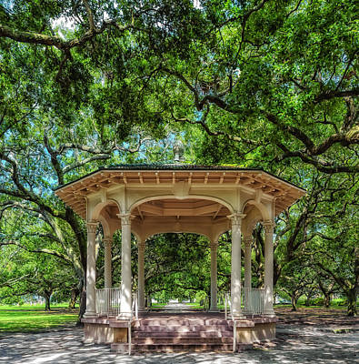 Large Oak Tree Photograph - Williams Music Pavilion - Charleston by Frank J Benz