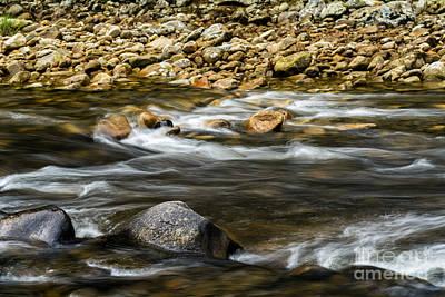 Williams River Summer Flow Art Print by Thomas R Fletcher