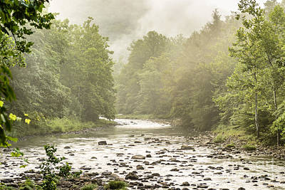 Williams River Summer Mist Art Print