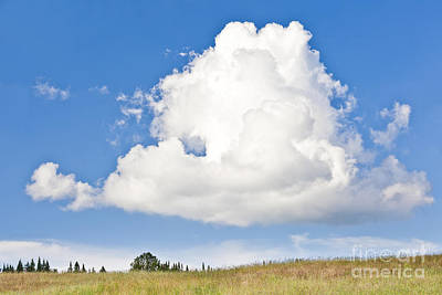 Photograph - Willoughby Cloudscape by Alan L Graham
