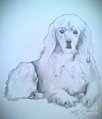 Cocker Spaniel Drawing - Willow 3 by Laurrie Lloyd