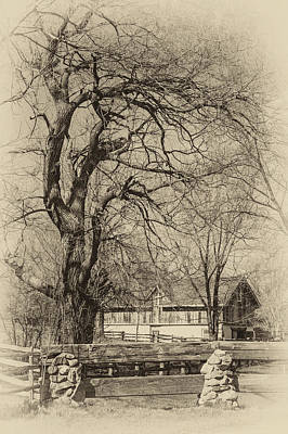 Featured Tapestry Designs - Willow and Barn sepia by Steve Harrington