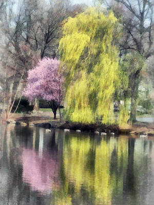 Photograph - Willow And Cherry By Lake by Susan Savad