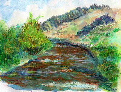 Painting - Willow Creek In Spring by C Sitton