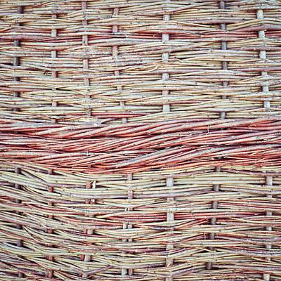 Willow Fiber Art Print by Tom Gowanlock