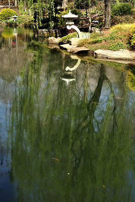 Photograph - Willow Reflection 2 by George Taylor