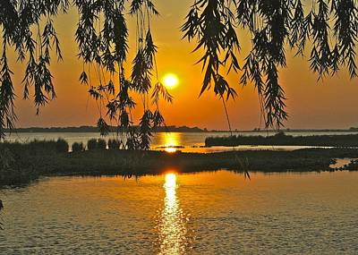Willow Lake Photograph - Willow Tree Sunset by Frozen in Time Fine Art Photography