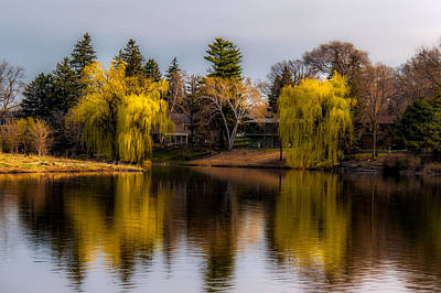 Photograph - Willow Trees At Silver Lake by Tom Gort