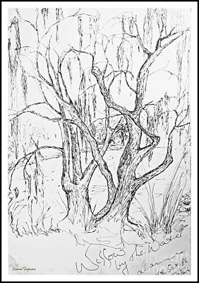 Drawing - Willows By The Lake - Within Border by Leanne Seymour