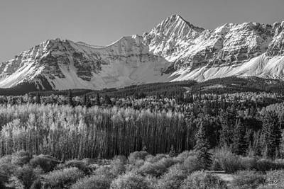 Photograph - Wilson Peak Black And White by Aaron Spong