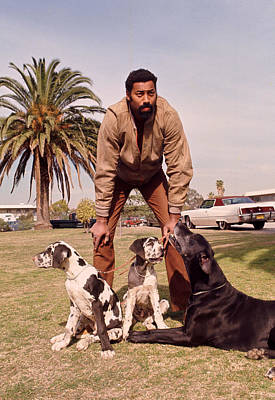 Wilt Chamberlain With Dogs Art Print by Retro Images Archive