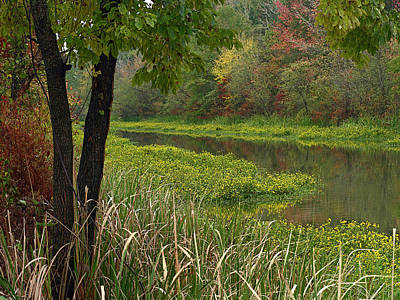Wilton Landing At Millwood Lake Art Print