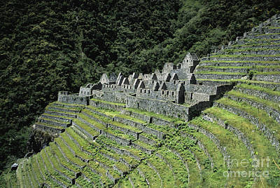 Terracing Photograph - Winay Wayna Inca Trail Peru by James Brunker