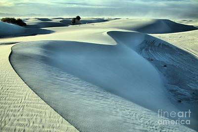 Photograph - Wind At White Sands by Adam Jewell