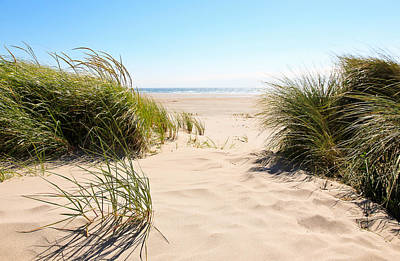 Photograph - Wind Blowing In The Sand by Athena Mckinzie