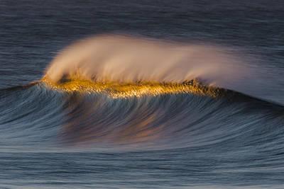 Photograph - Wind Blown Crest 73a0374 by David Orias